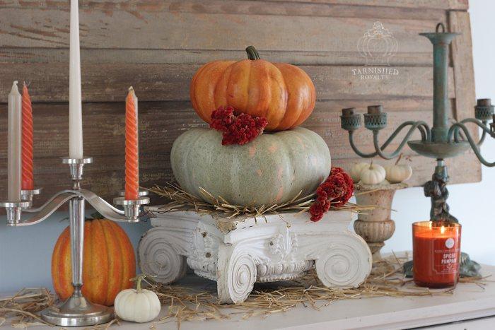 baby_boo_pumpkins_vignette_11