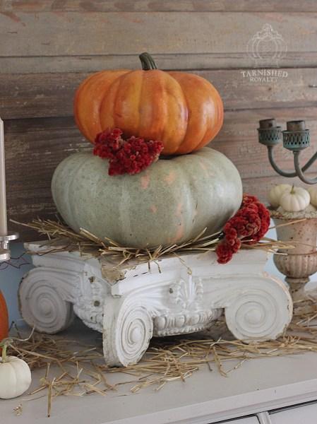 baby_boo_pumpkins_vignette_12